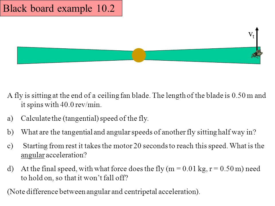 Black board example 10.2 vt. A fly is sitting at the end of a ceiling fan blade. The length of the blade is 0.50 m and it spins with 40.0 rev/min.