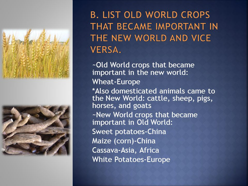 B. List Old world crops that became important in the new world and vice versa.