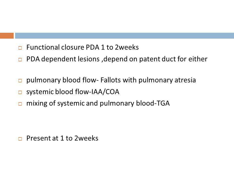 Functional closure PDA 1 to 2weeks