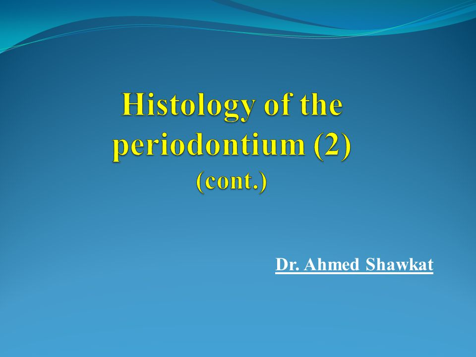 Histology of the periodontium (2) (cont.)