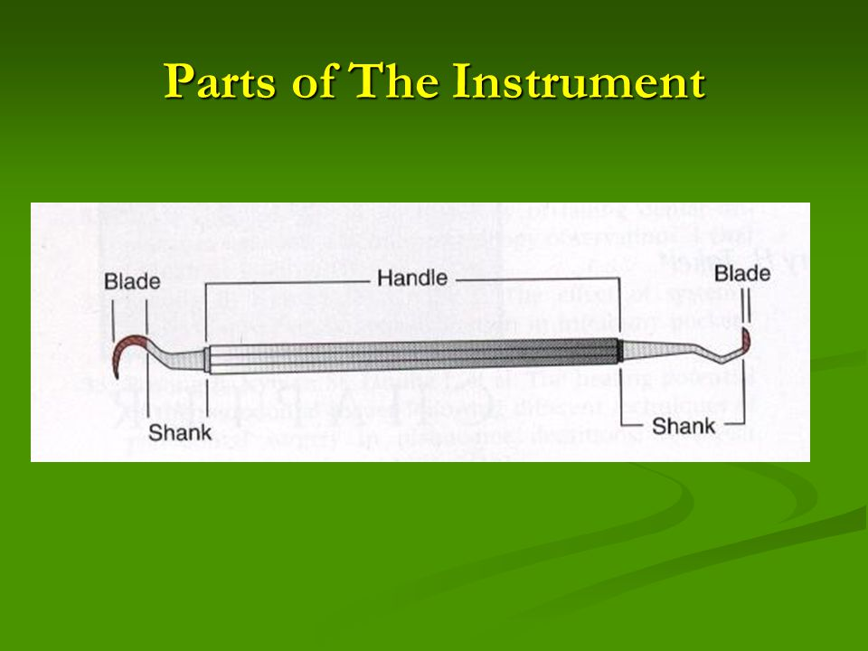 Parts of The Instrument