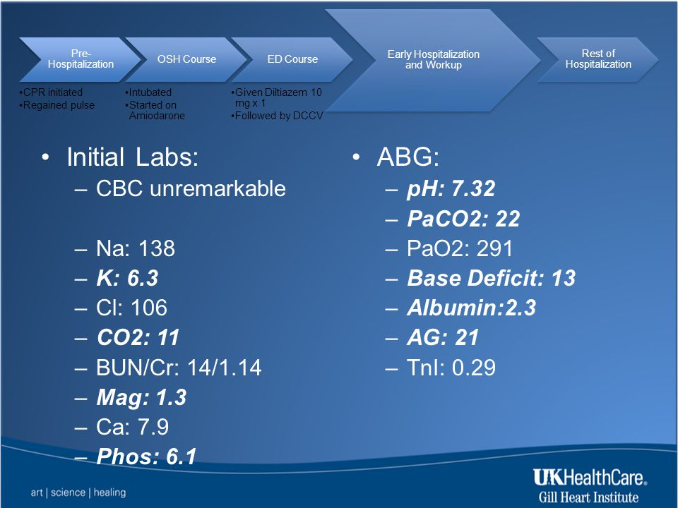 Initial Labs: ABG: CBC unremarkable Na: 138 K: 6.3 Cl: 106 CO2: 11