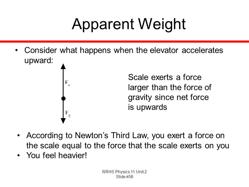 Apparent Weight Consider what happens when the elevator accelerates upward: