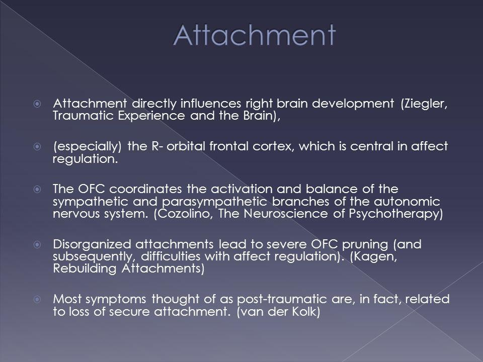 Attachment Attachment directly influences right brain development (Ziegler, Traumatic Experience and the Brain),