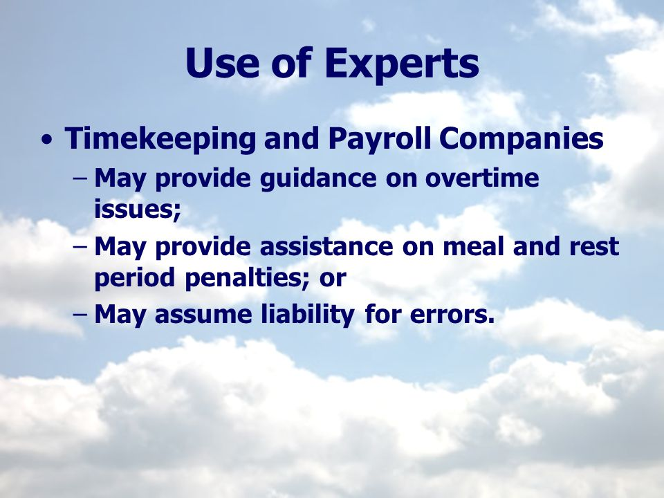 Use of Experts Timekeeping and Payroll Companies