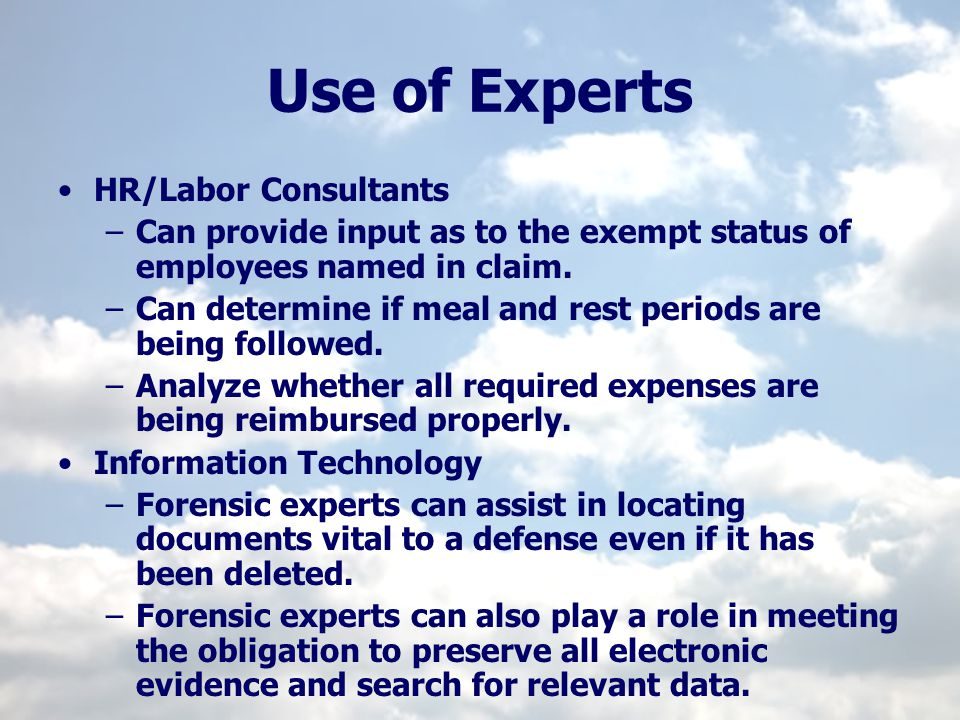 Use of Experts HR/Labor Consultants