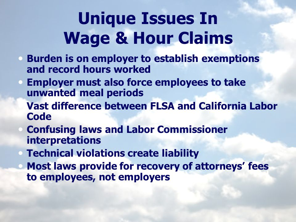 Unique Issues In Wage & Hour Claims