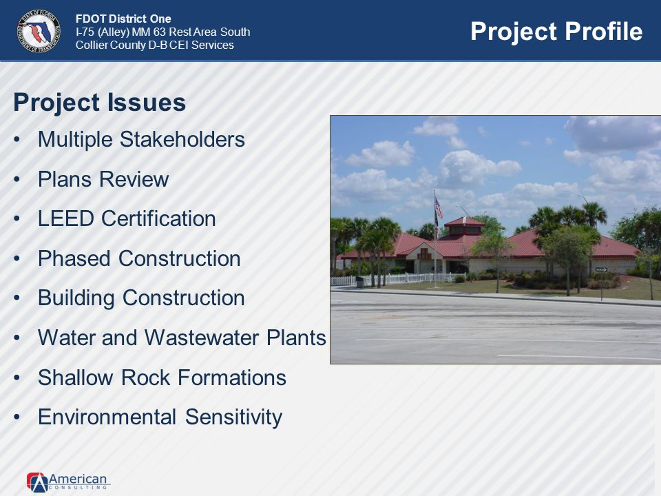 Project Profile Project Issues Multiple Stakeholders Plans Review
