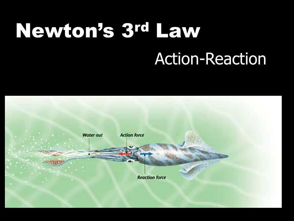 Newton's 3rd Law Action-Reaction Action and Reaction