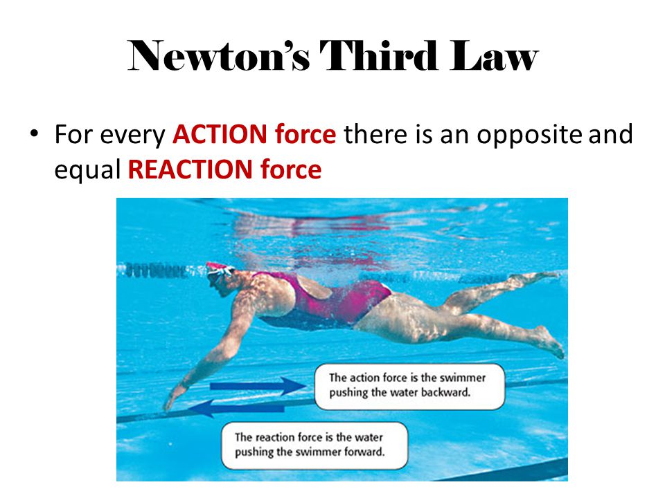 Newton's Third Law For every ACTION force there is an opposite and equal REACTION force
