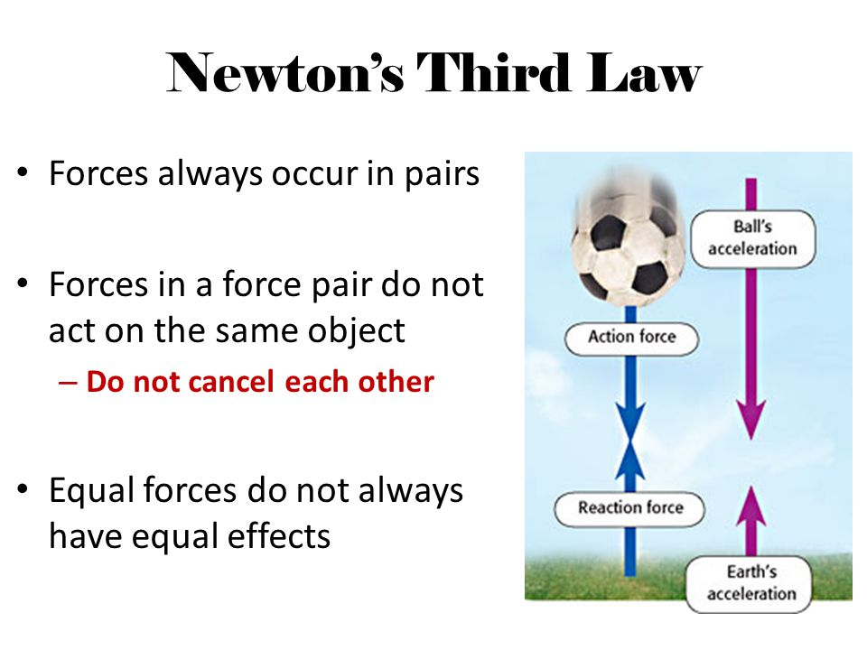 Newton's Third Law Forces always occur in pairs