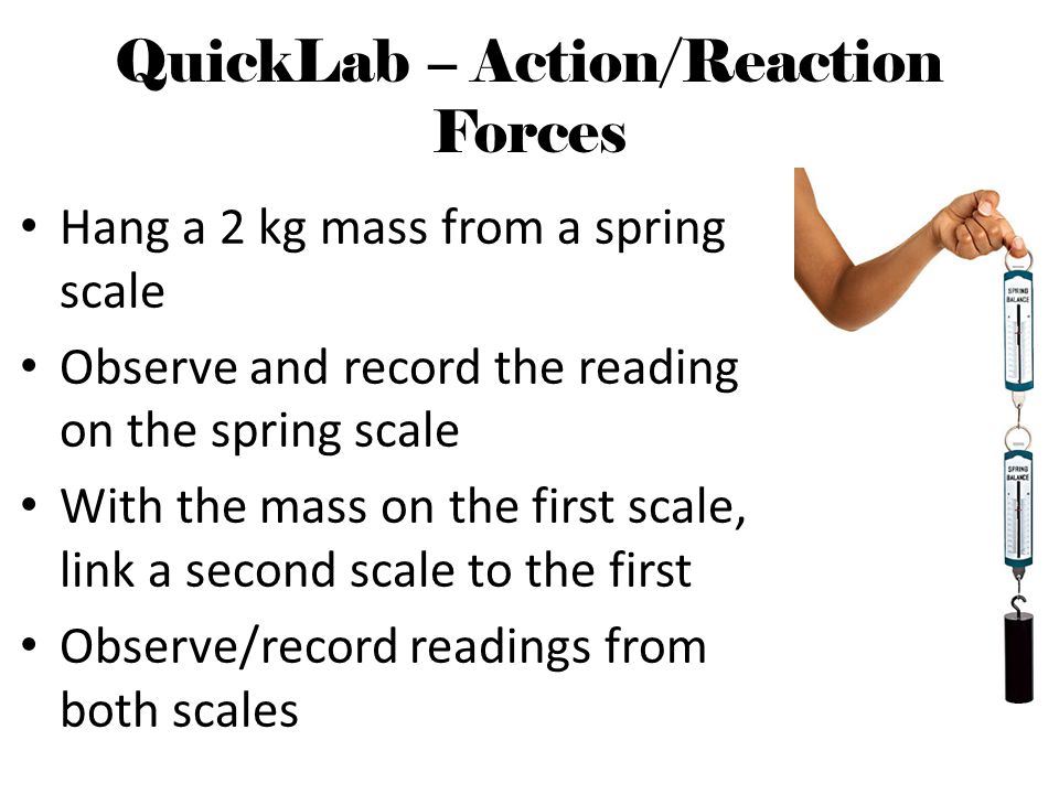 QuickLab – Action/Reaction Forces