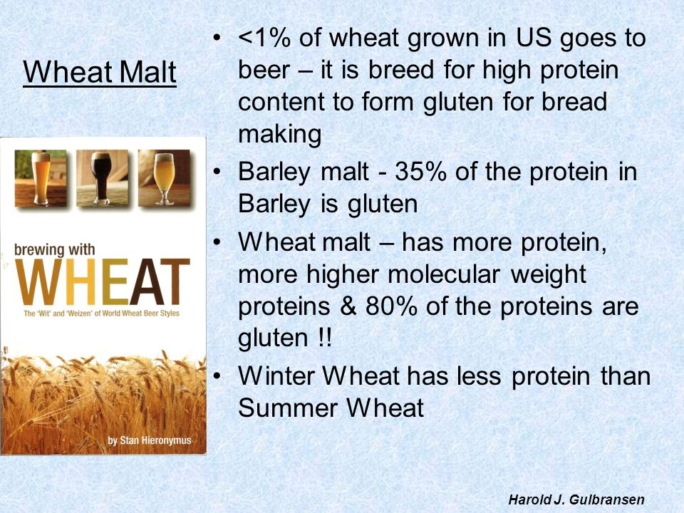 <1% of wheat grown in US goes to beer – it is breed for high protein content to form gluten for bread making