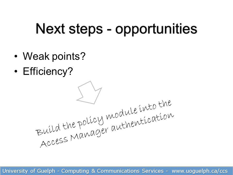 Next steps - opportunities