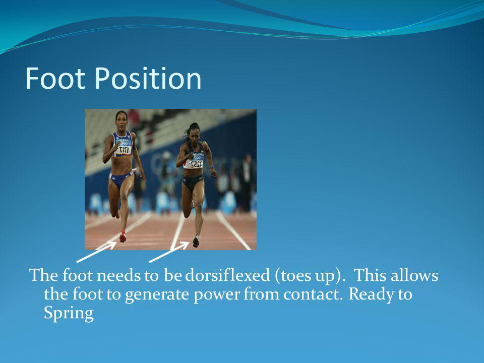Foot Position The foot needs to be dorsiflexed (toes up).