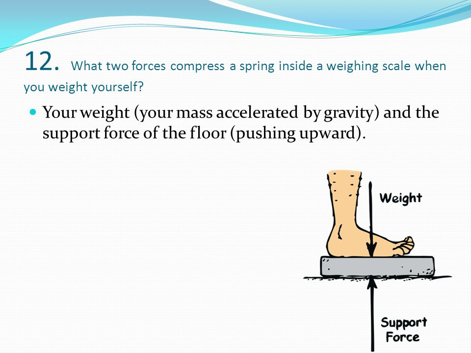 12. What two forces compress a spring inside a weighing scale when you weight yourself