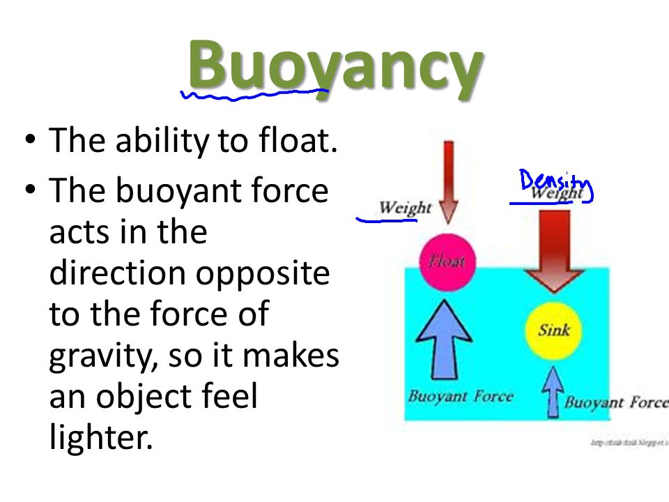 Buoyancy The ability to float.