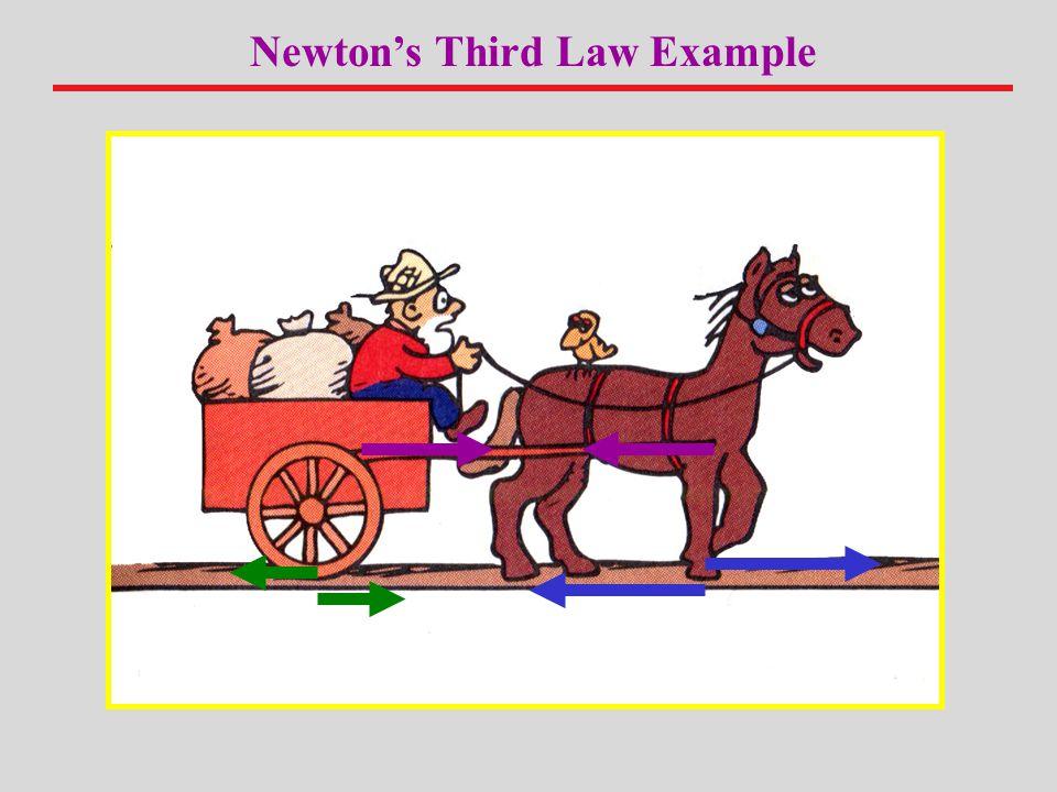 Newton's Third Law Example