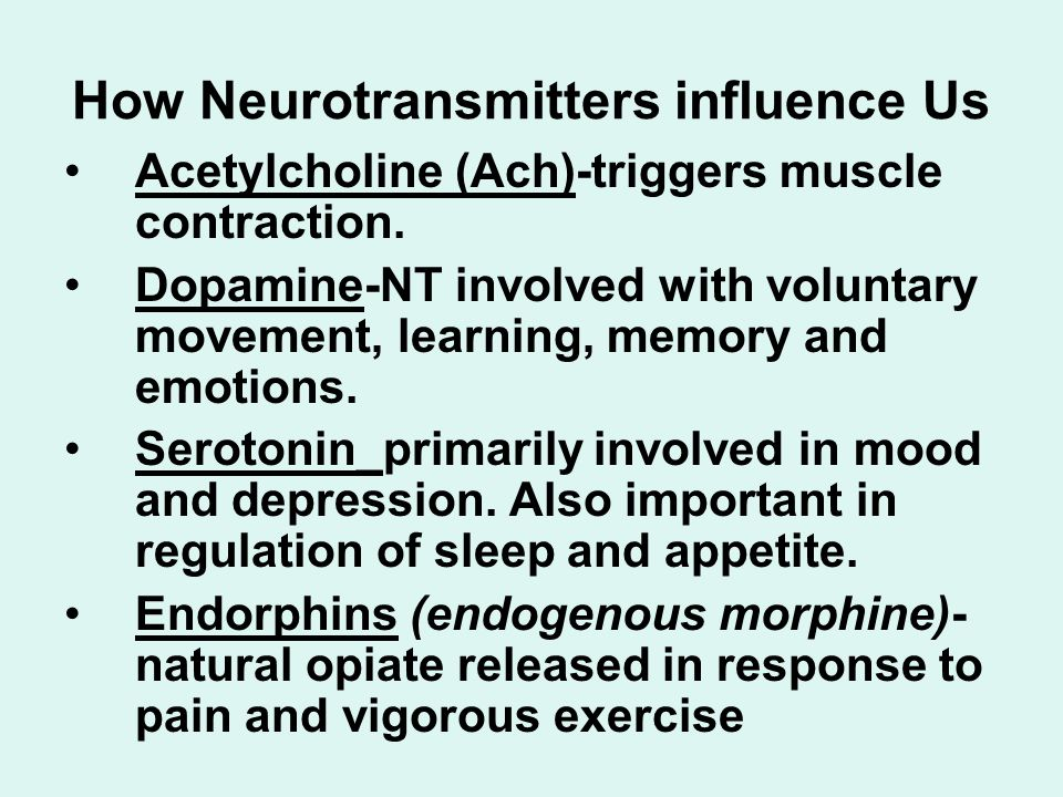 How Neurotransmitters influence Us