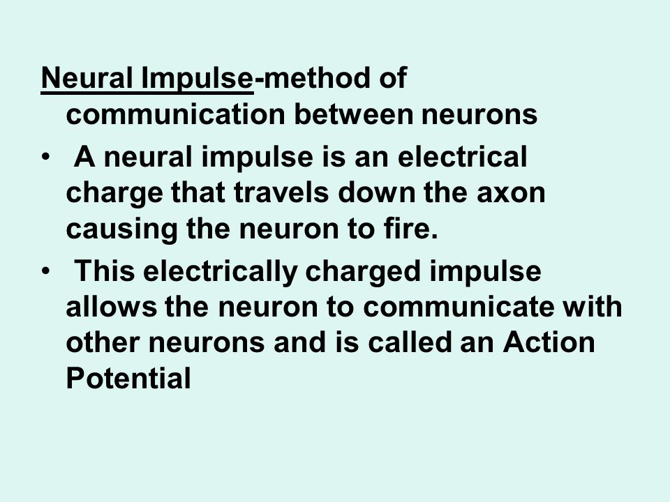Neural Impulse-method of communication between neurons