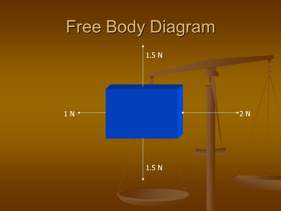 Free Body Diagram 1.5 N 1 N 2 N 1.5 N