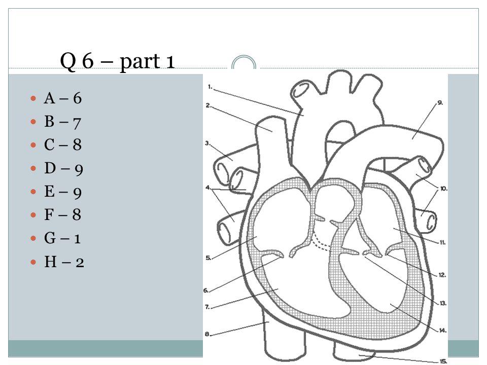 Q 6 – part 1 A – 6 B – 7 C – 8 D – 9 E – 9 F – 8 G – 1 H – 2