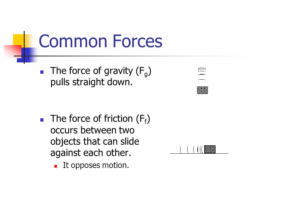 Common Forces The force of gravity (Fg) pulls straight down.