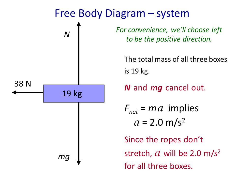 Free Body Diagram – system