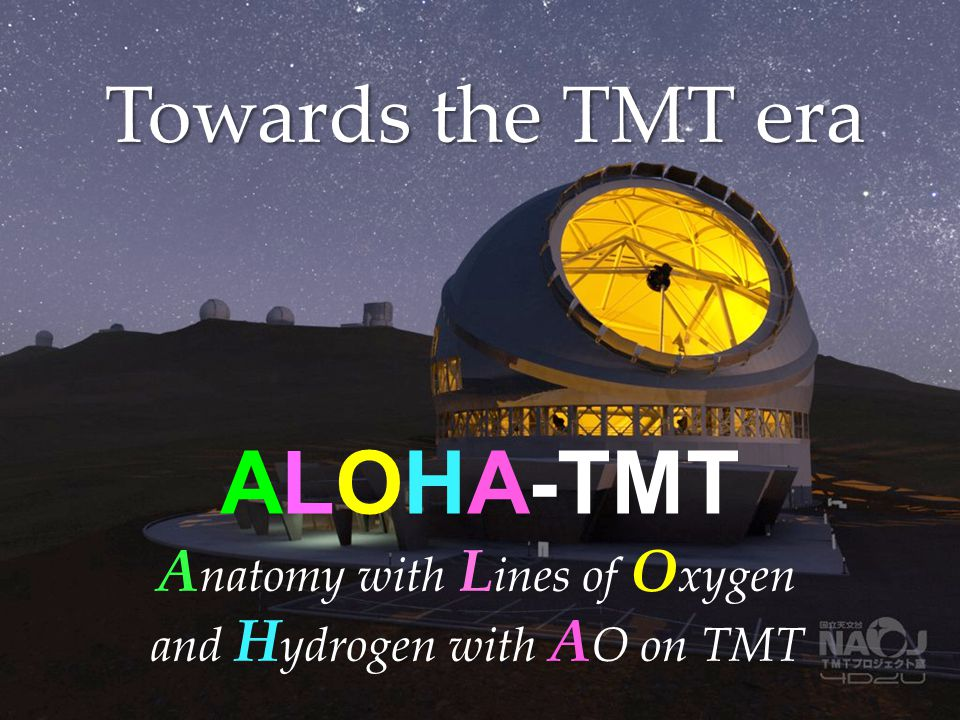ALOHA-TMT Towards the TMT era Anatomy with Lines of Oxygen