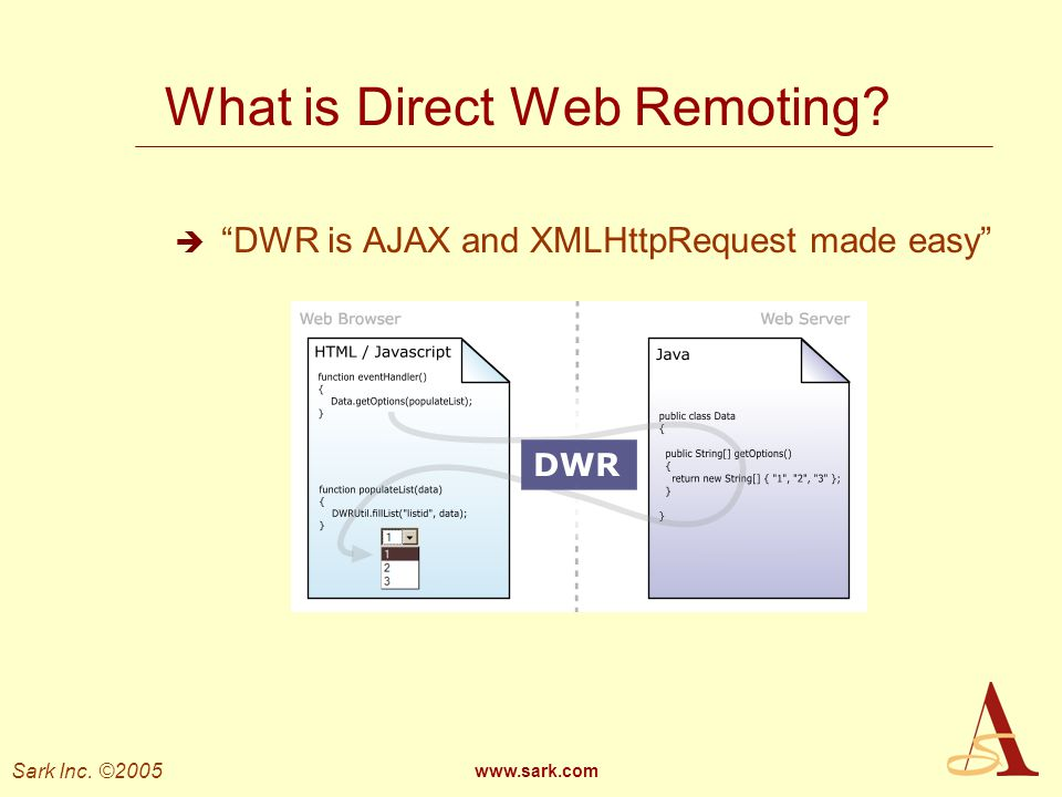 What is Direct Web Remoting