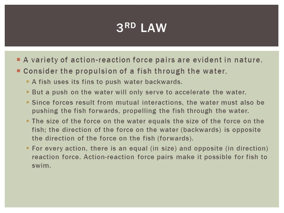 3rd law A variety of action-reaction force pairs are evident in nature. Consider the propulsion of a fish through the water.