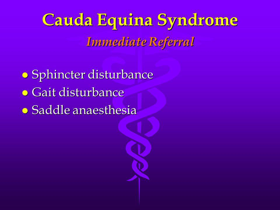 Cauda Equina Syndrome Immediate Referral