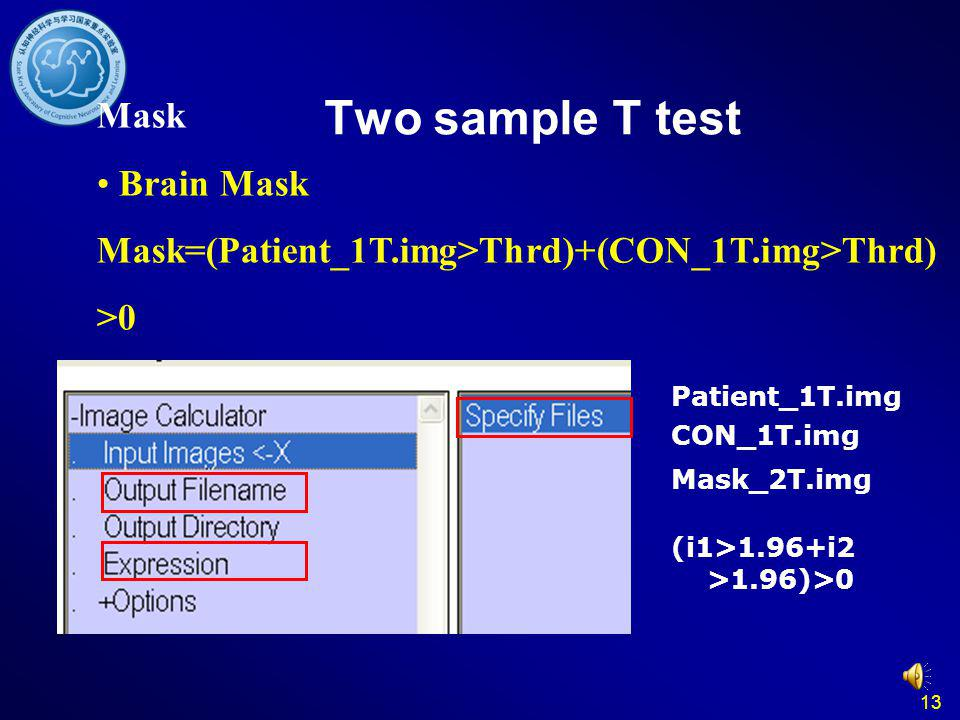 Two sample T test Mask Brain Mask
