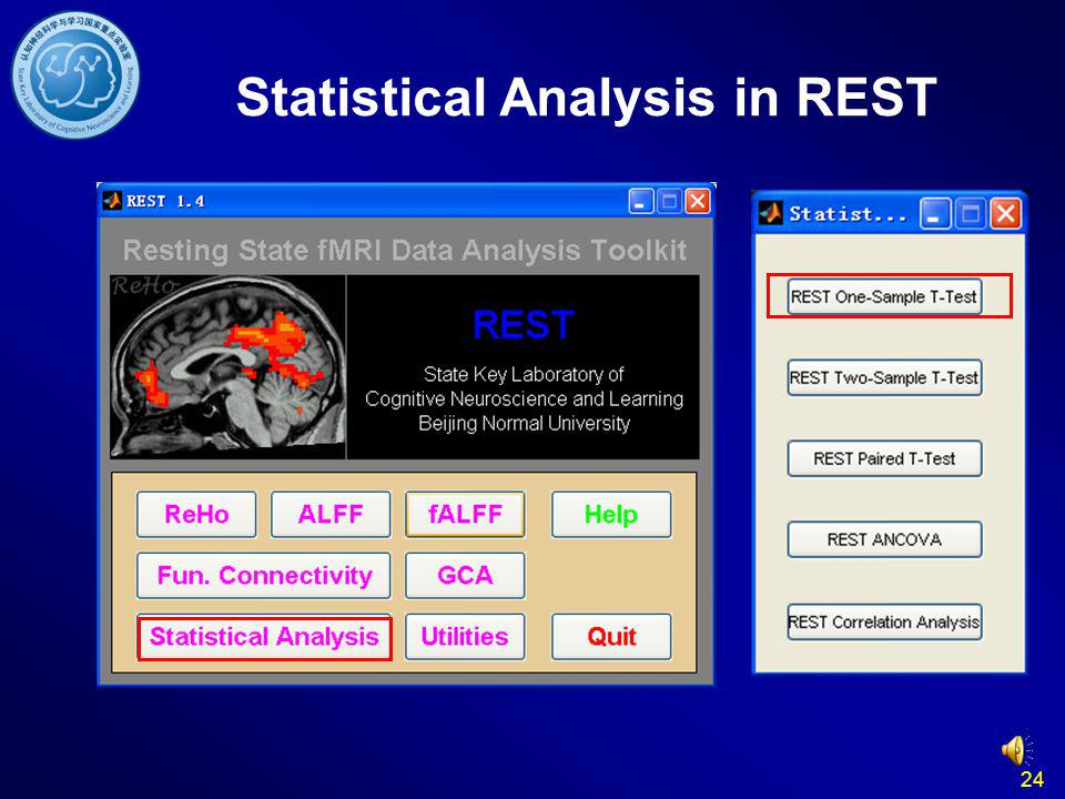 Statistical Analysis in REST