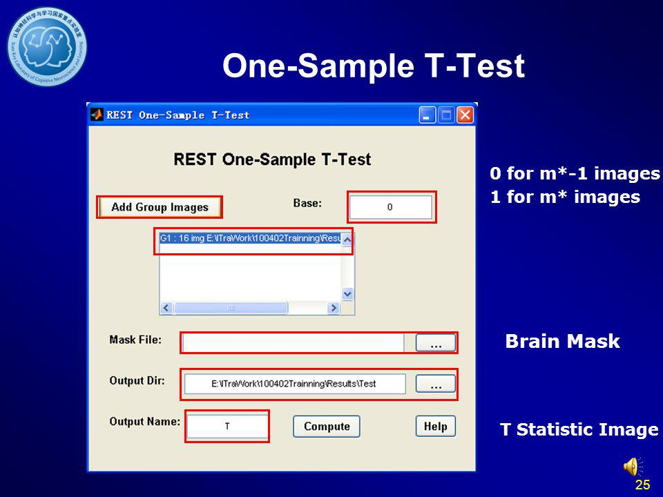One-Sample T-Test Brain Mask 0 for m*-1 images 1 for m* images