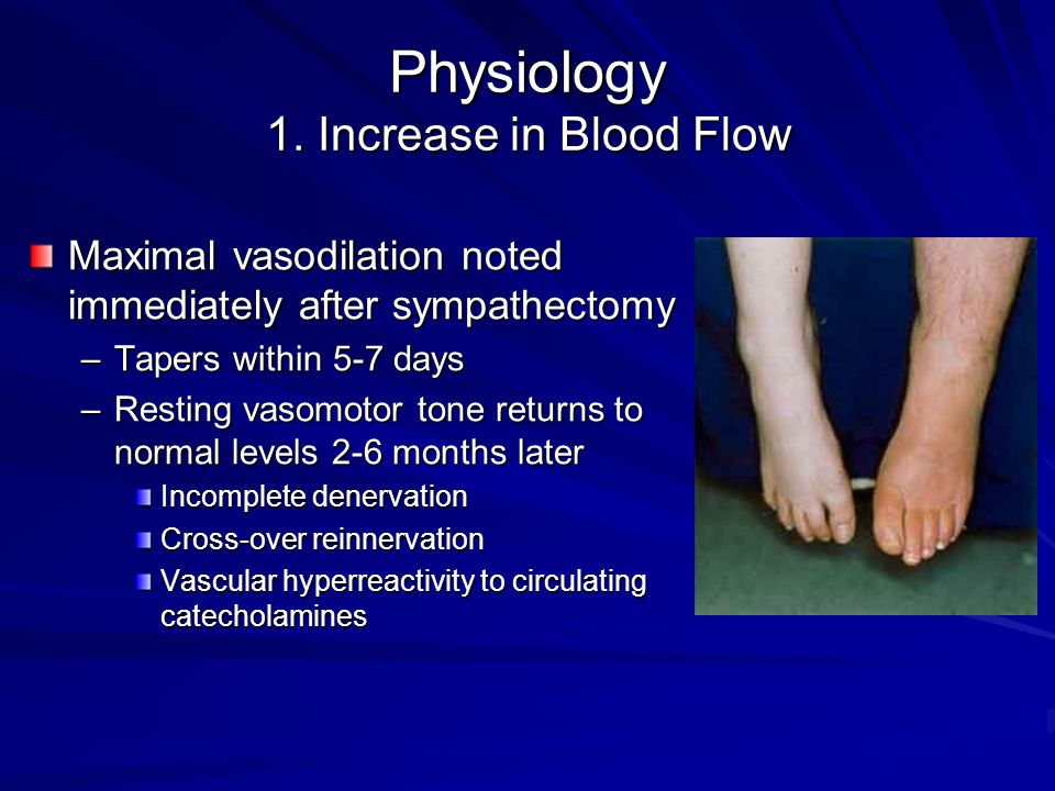 Physiology 1. Increase in Blood Flow