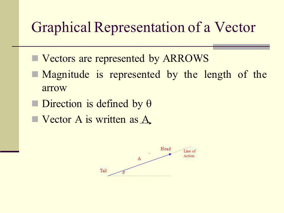 Graphical Representation of a Vector