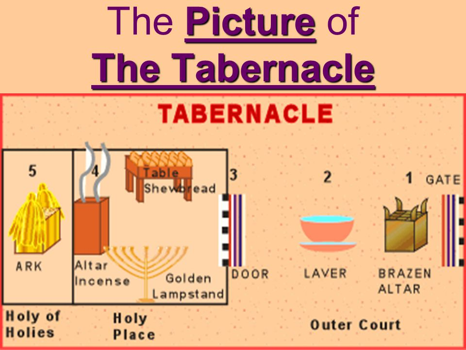 The Picture of The Tabernacle