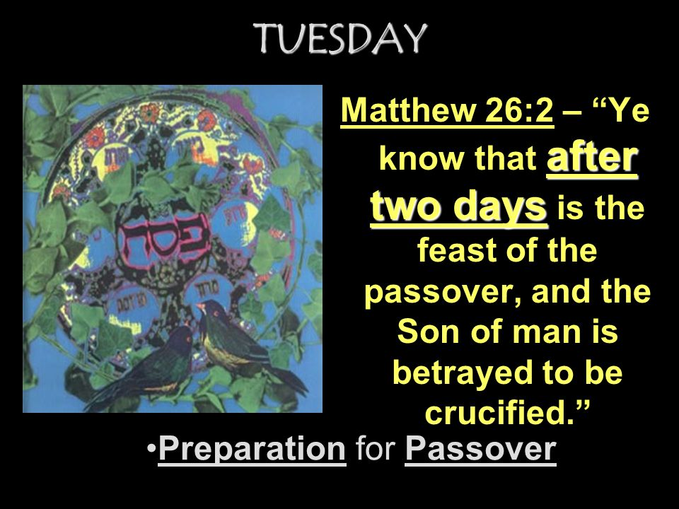Preparation for Passover