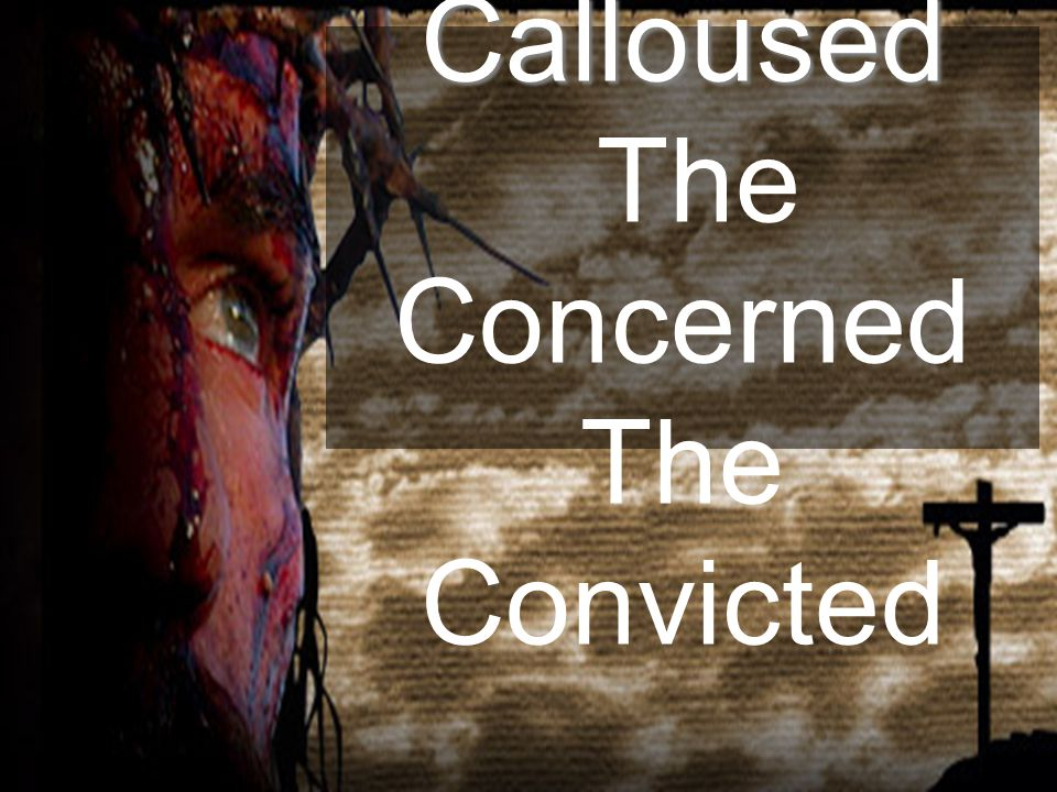 The Calloused The Concerned The Convicted