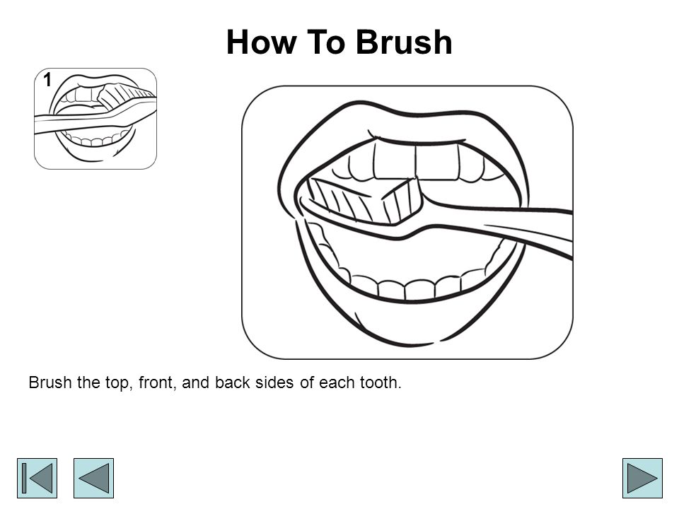 How To Brush 1 Brush the top, front, and back sides of each tooth.
