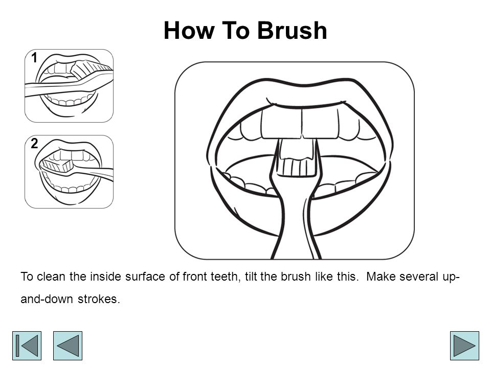 How To Brush To clean the inside surface of front teeth, tilt the brush like this.