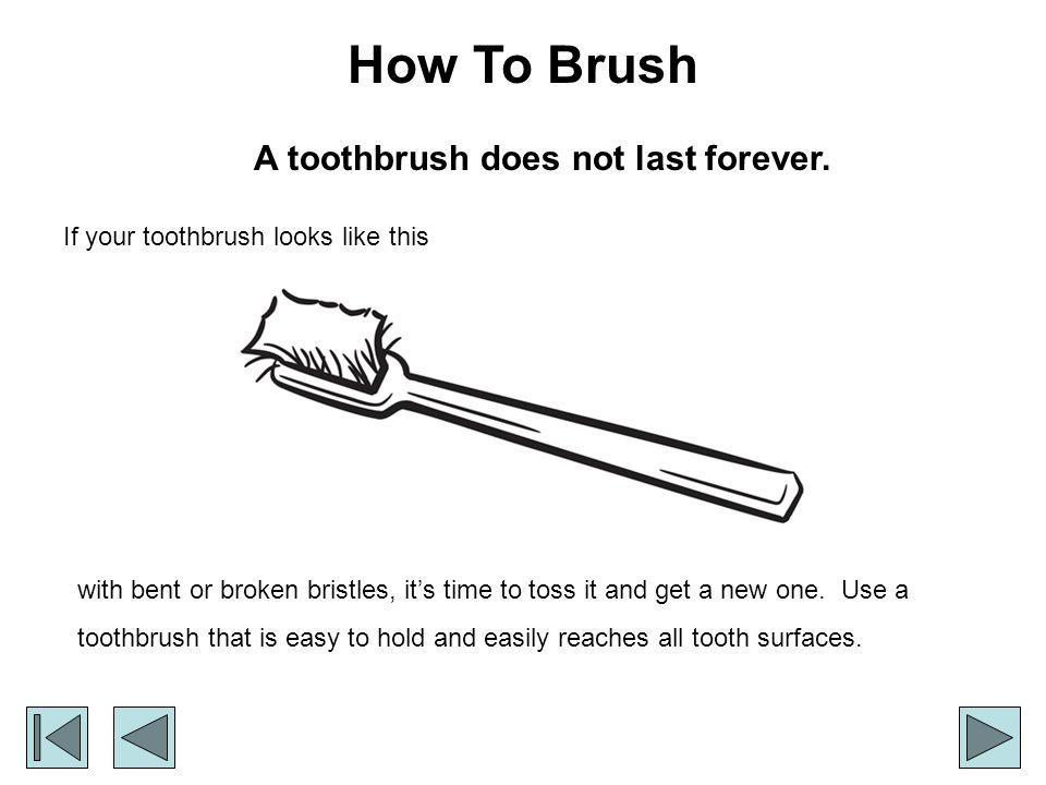 A toothbrush does not last forever.