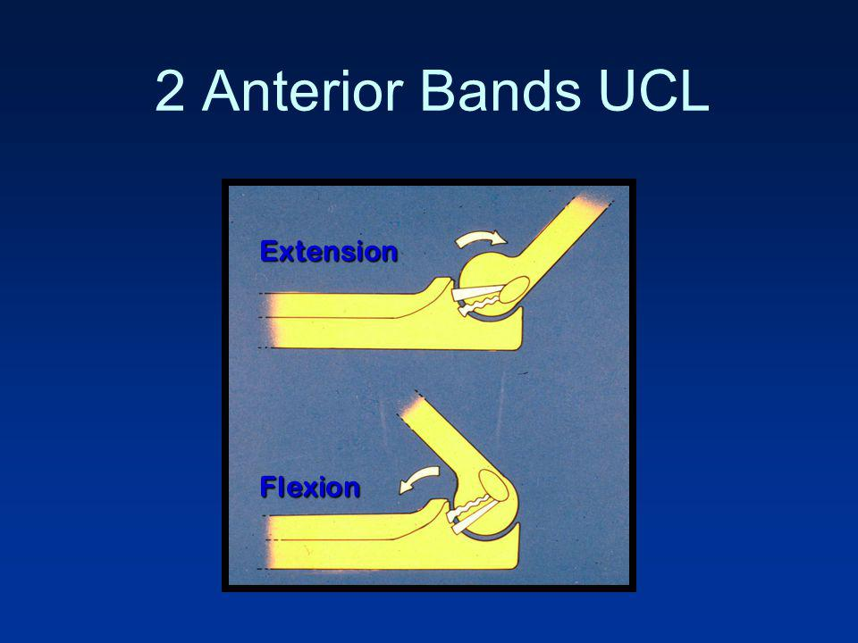 2 Anterior Bands UCL Extension Flexion