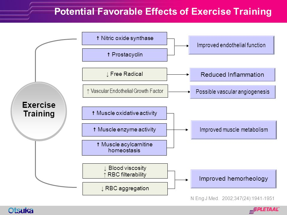 Potential Favorable Effects of Exercise Training