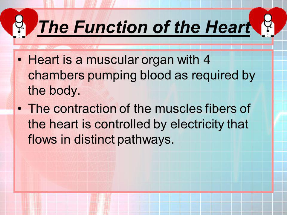 The Function of the Heart