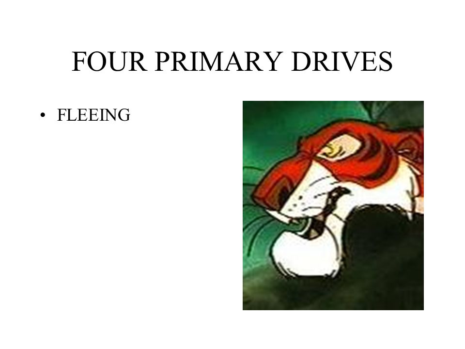 FOUR PRIMARY DRIVES FLEEING