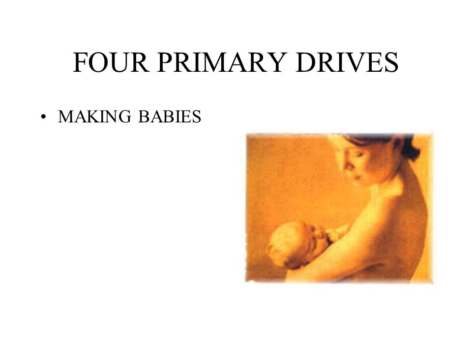 FOUR PRIMARY DRIVES MAKING BABIES