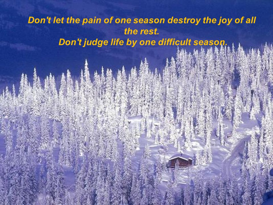 Don t let the pain of one season destroy the joy of all the rest.