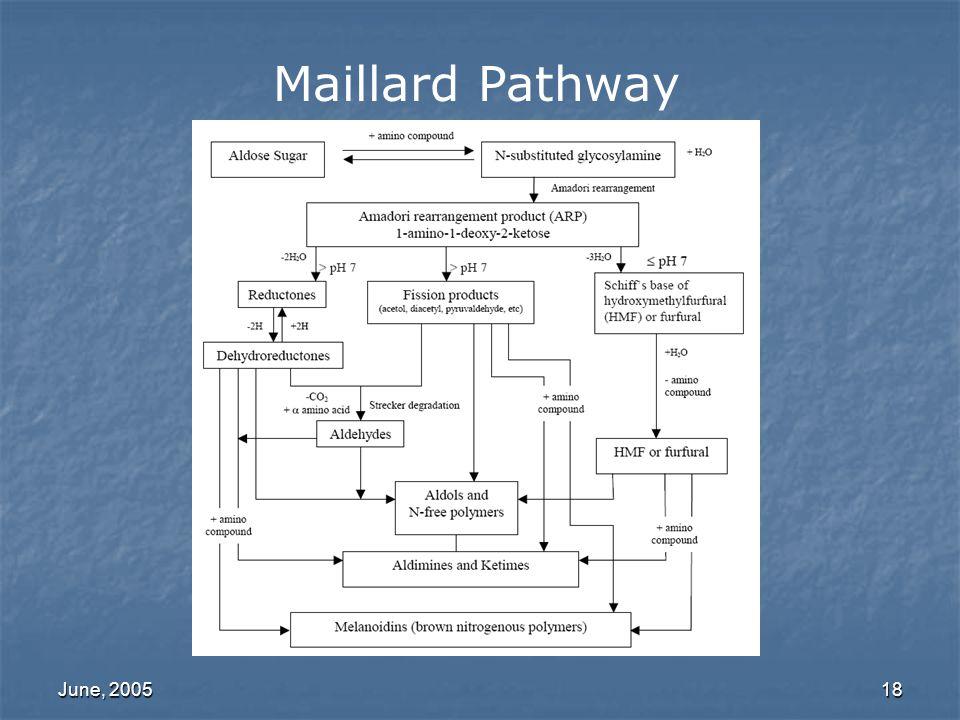 Maillard Pathway June, 2005